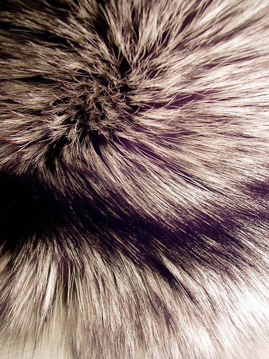 pelliccia stato del cuoio e del pelo
